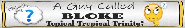 a-guy-called-bloke-banner-topical-tropical-trinity-jpeg
